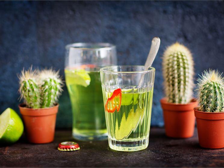 Kaktus-shandy