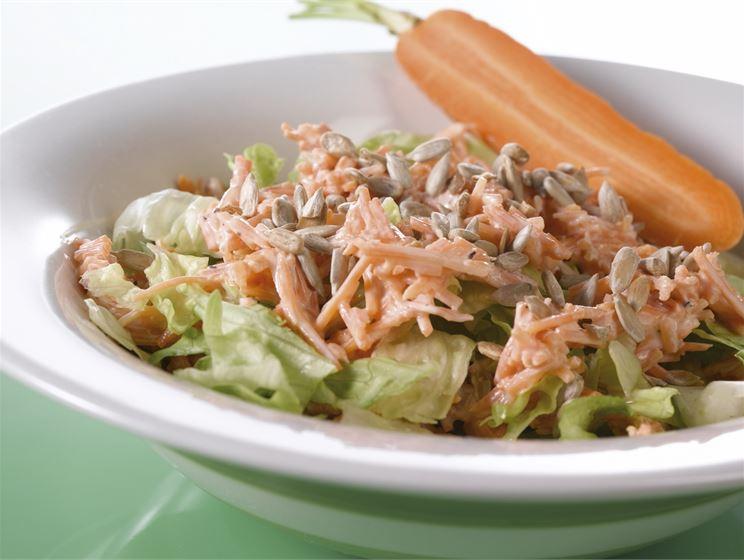Porkkanatzatzikilla höystetty salaatti