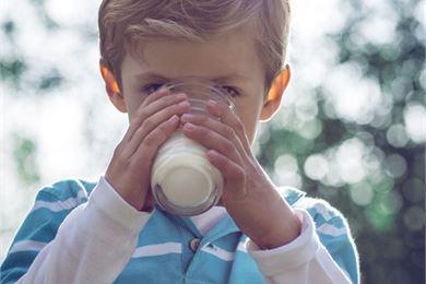 Maidon vitamiinit ja kivennäisaineet