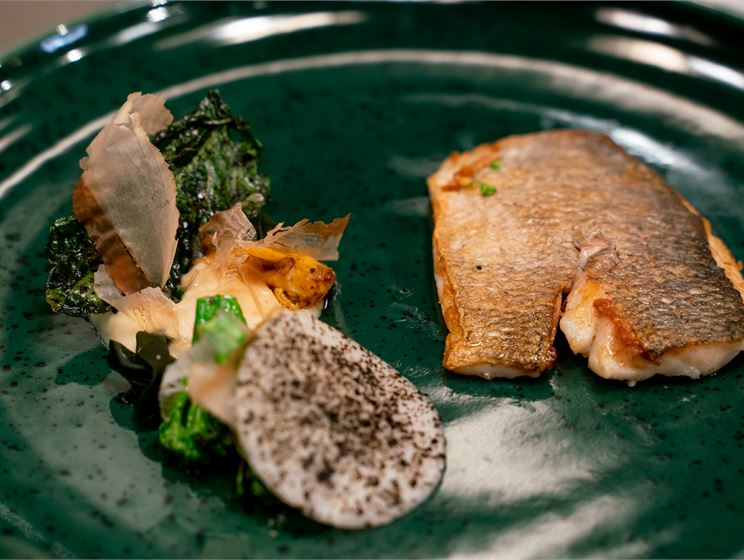 Patrikin paistettua kultaotsa-ahventa, kyssäkaalipyrettä, pikkelikyssäkaalia, marinoitua wakamea, broccoliinia ja kombulientä
