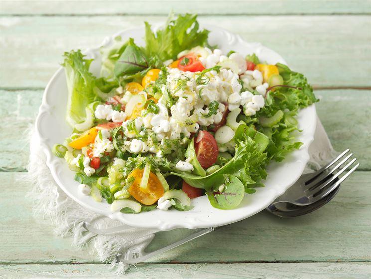 Raejuusto-tomaattisalaatti