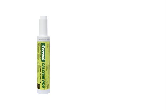 Correct-Calsium Pro mineraalipasta tuotetiedot