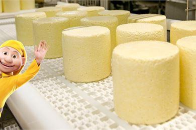 Valion Haapaveden juustola on herra Oltermannin koti