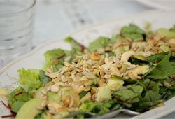 Avocadosalaatti
